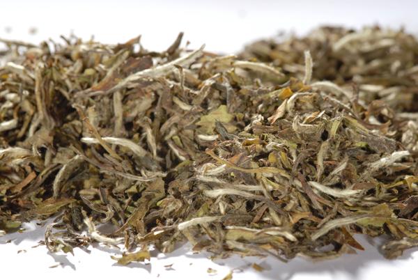 Bio - Weisser Tee - China Pai MuTan 1st Grade