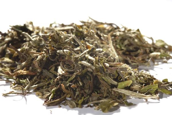 Weisser Tee - China Pai MuTan 1st Grade - White Peony