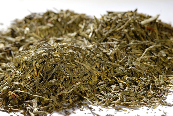 Bio - Grüner Tee - China Sencha